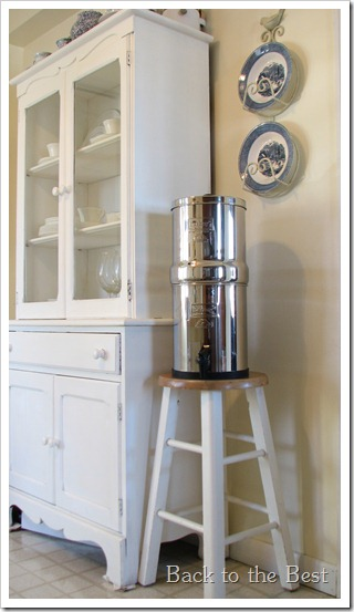 Big Berkey Questions Answered Back To The Best
